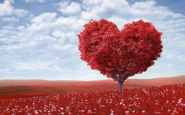 Manifesto ao amor incondicional
